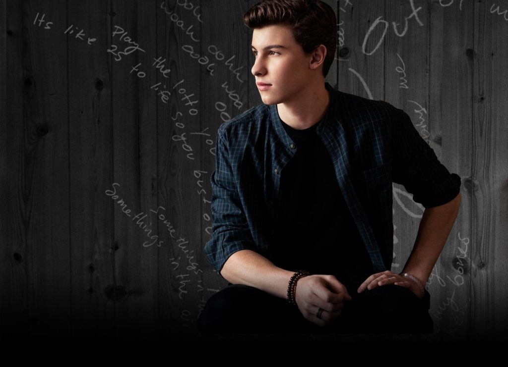 shawn mendes cover