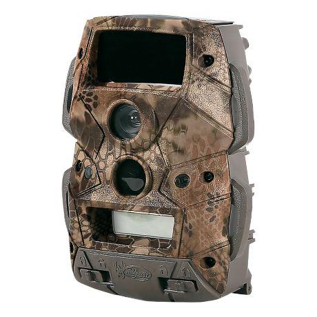 Best Trail Cameras For Detection Range