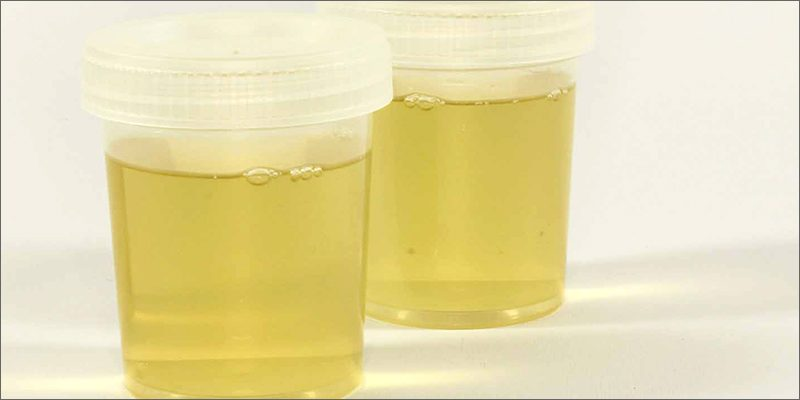 synthetic urine